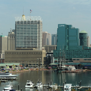 city and state and federal government contracting in maryland bay